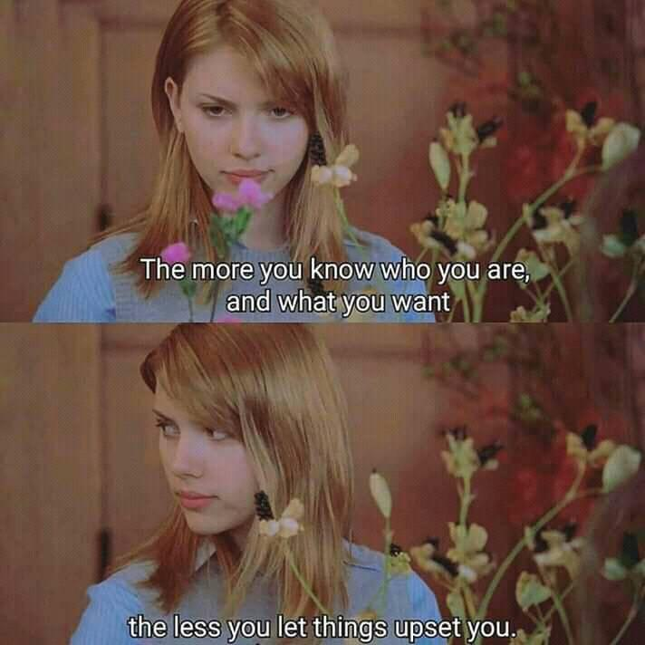 the less you let things upset you- Lost in Translation   dir: Sofia Coppola