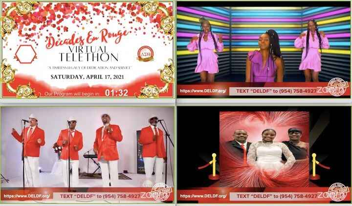 A virtual telethon event? Yup....we did it!  This event contained presentations, performances from multiple artists in m...