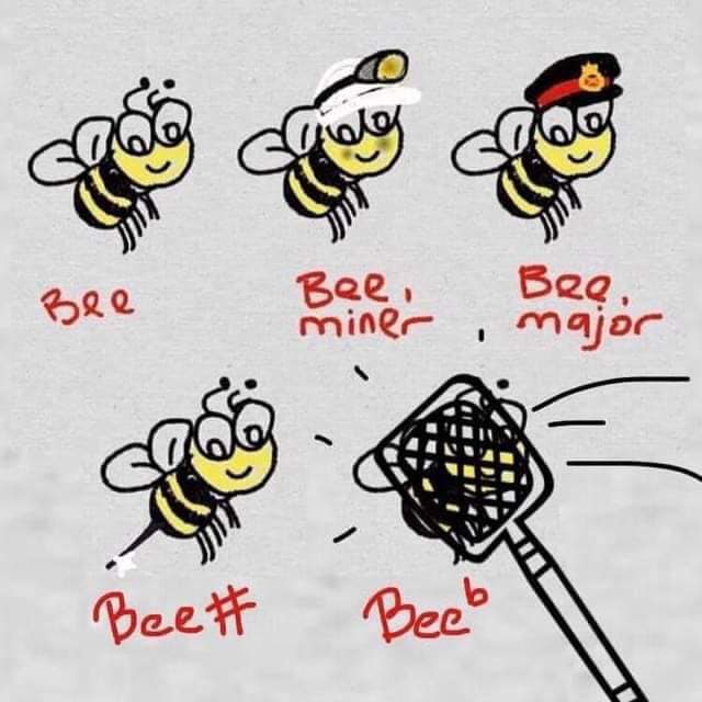 Could this *bee* any better? 😁