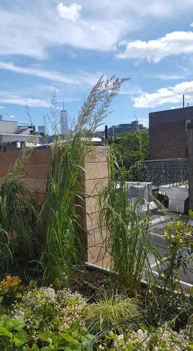 #roofgarden with #oneworldtradeThis garden 2 years in the planning is planted. The crane helped but we still had to carr...