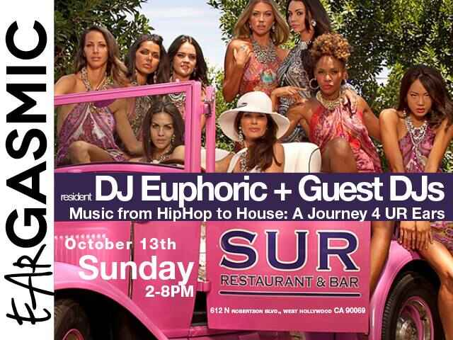 SUNDAY FUNDAY AT SUR LOUNGE: OCTOBER 13, 2013Join us after the AIDS WALK for our SUNDAY FUNDAY AIDS WALK AFTER PARTY fro...