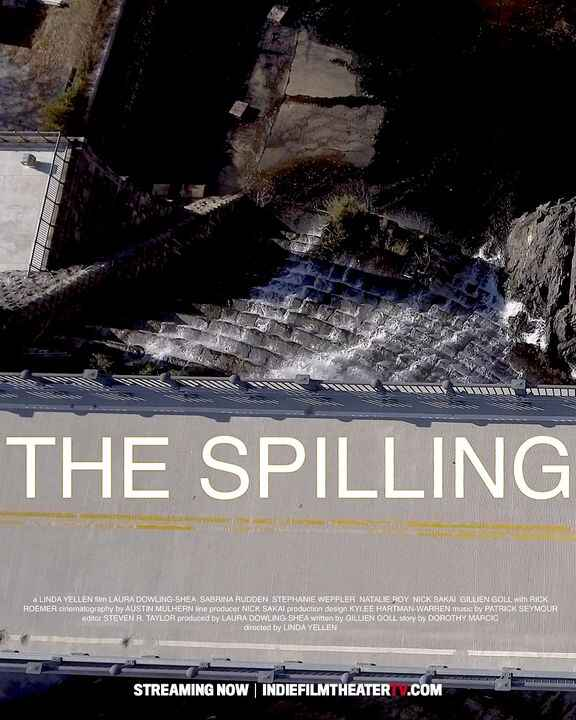 THE SPILLINGA woman forces her family to search for something she hopes will bring her closure.indiefilmtheatertv.com#In...